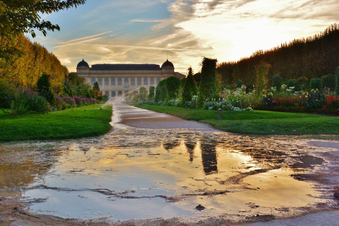 Jardin des plantes . 2014