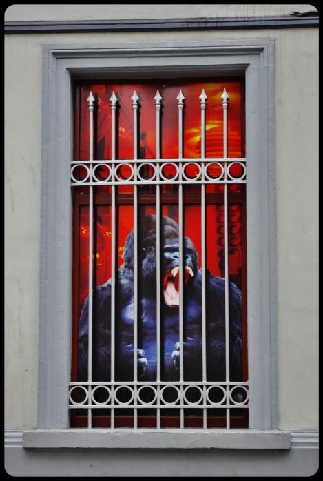 King Kong à Bruxelles
