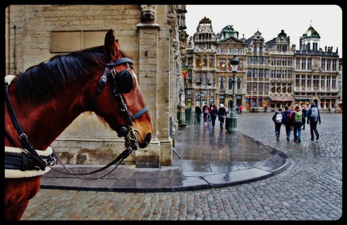 Bruxelles.La grande place