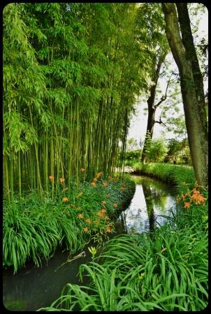 JARDIN D'eau claude Monet
