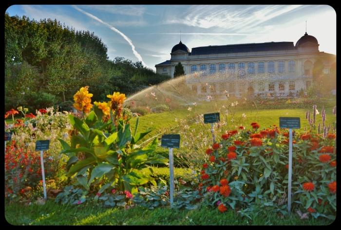 jardins des plantes 2014