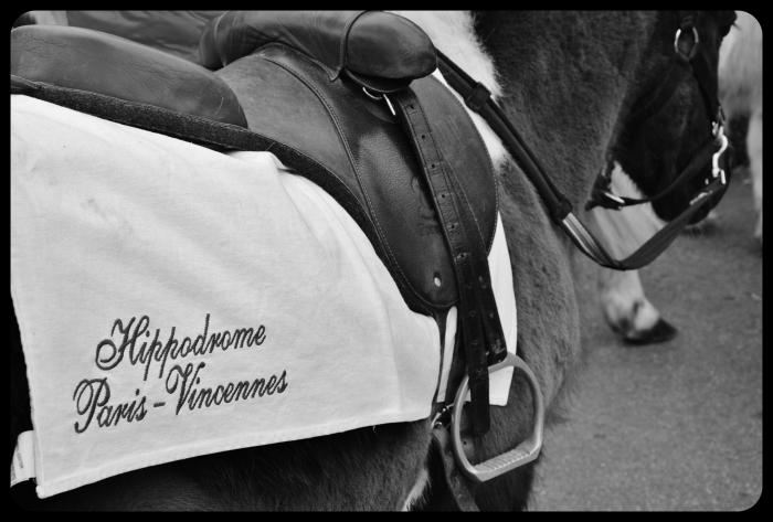 Hyppodrome 2015