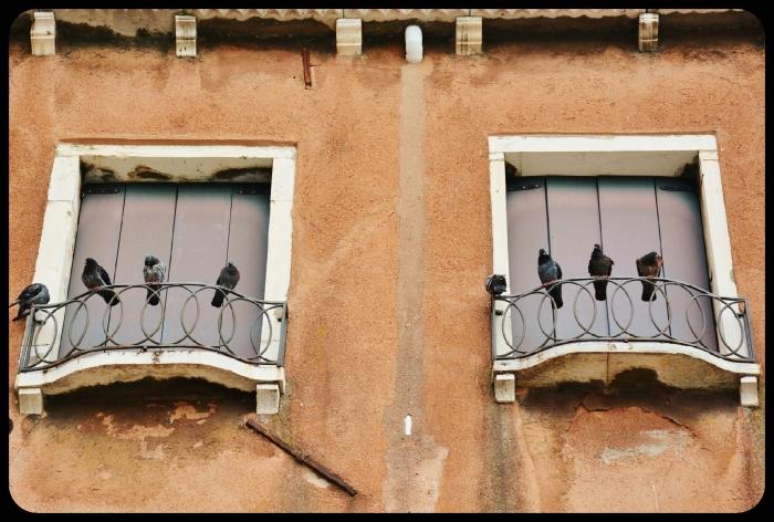 Venise juin 2016