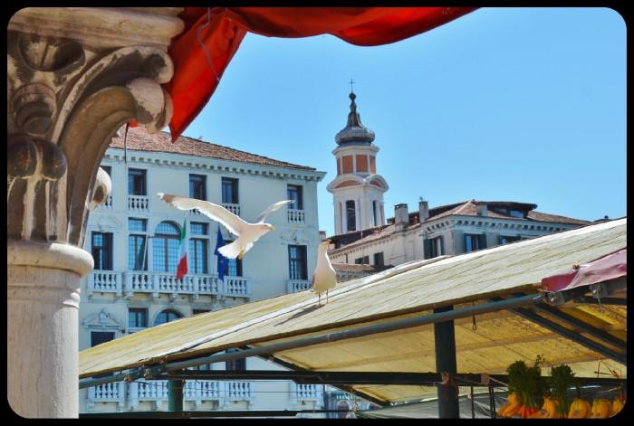 Venise 2016
