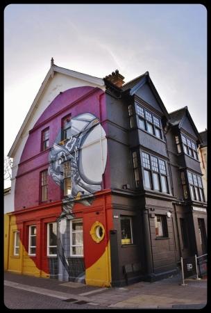 Brighton / UK 2017.ARTISTE SNUB23
