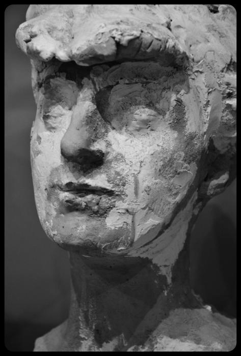 Buste de la comtesse Anna de Noailles (1906) par Rodin