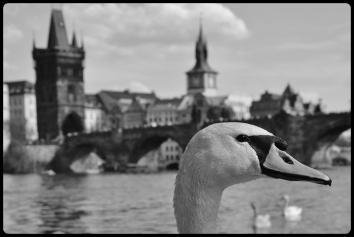 Prague 04.2019